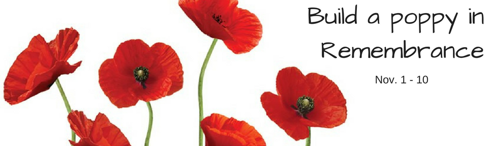 build-a-poppy-with-us